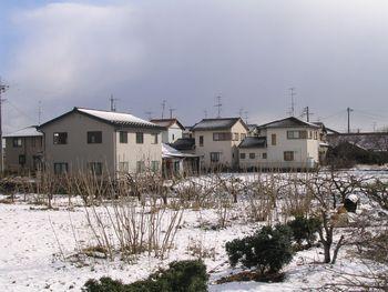 20070107.jpg